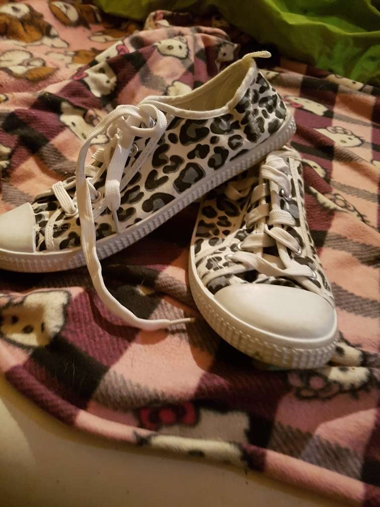 REGALO bambas animal print